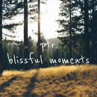 Ptr. - Blissful Moments
