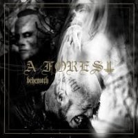Behemoth & Niklas Kvarforth - A Forest