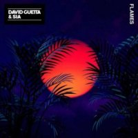 David Guetta & Sia - Flames (remix)